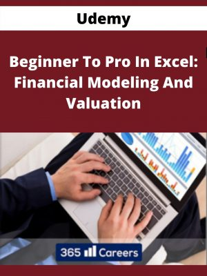 Udemy - Beginner To Pro In Excel: Financial Modeling And Valuation